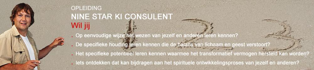 Cursus Nine Star Ki consulent